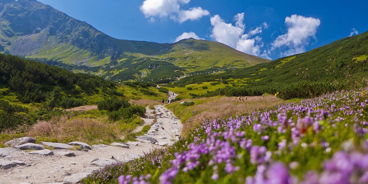 Najlepsze miejsca do zobaczenia w Tatrach